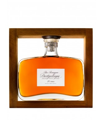 DARTIGALONGUE ARMAGNAC 20 YEARS - CARAFE YOGI 50 cl